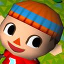 Animal Crossing Wild World Game 插件