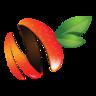 MangoSigns Chrome Player插件