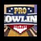 Pro Bowling 3D 插件