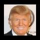 Triumphant Trump 插件
