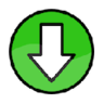 Flash Video Downloader Plus 插件
