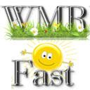 WMRFast Extension 插件