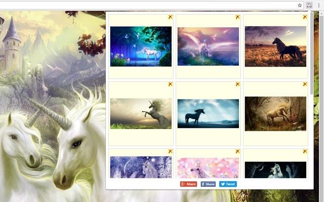 Unicorn Photo Gallery