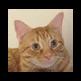 Cat Pun Replacer 插件