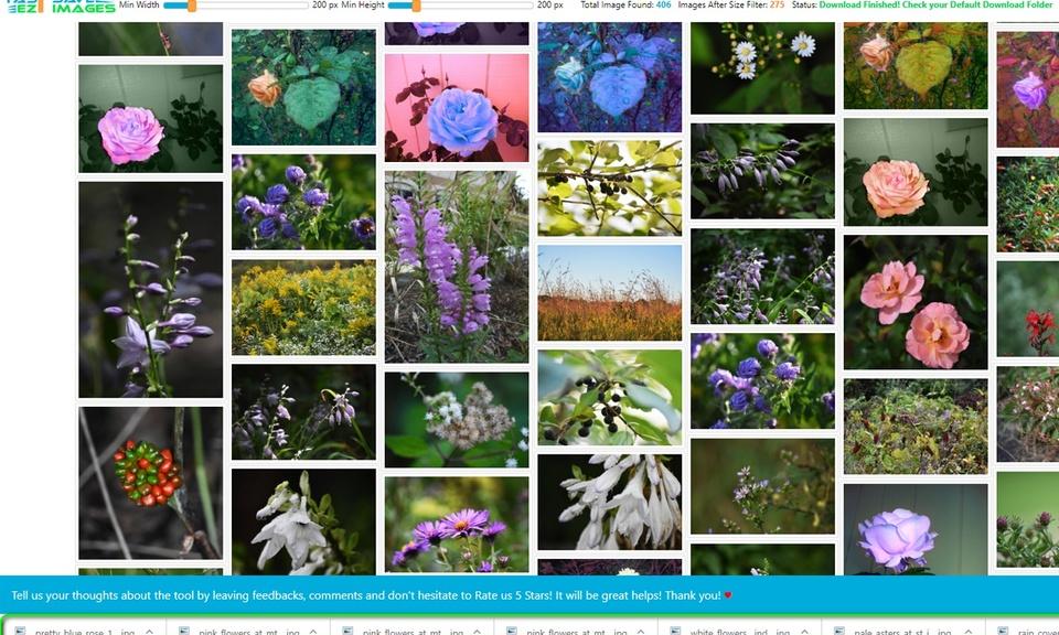 Fastezt - Save Images Photos on Websites