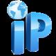 Public IP 插件