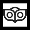 OwlFactor News Evaluator插件