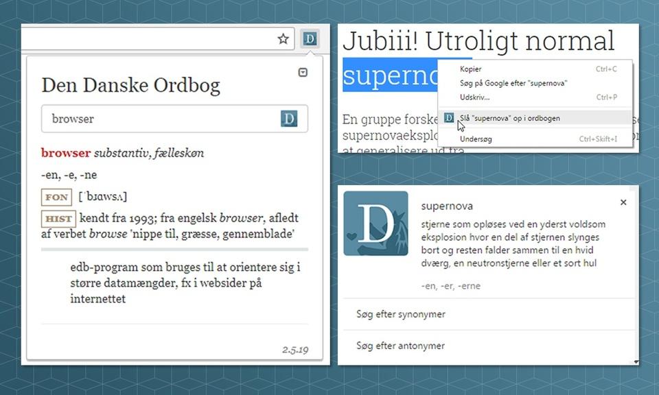 The Danish Dictionary