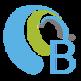 Brochesia Mirroring 插件
