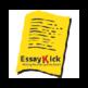 EssayKick Extension 插件