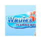 Wauies game 插件