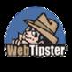 WebTipster Dropshipping Tool 插件