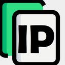Copy My IP 插件