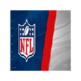 NFL 插件