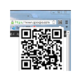 Direct URL to QR Code 插件