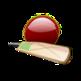 Cricket ICC 插件