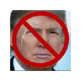 Donald Trump Filter 插件