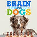 Brain Training For Dogs 插件