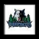 Minnesota Timberwolves official website 插件
