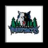 Minnesota Timberwolves official website插件