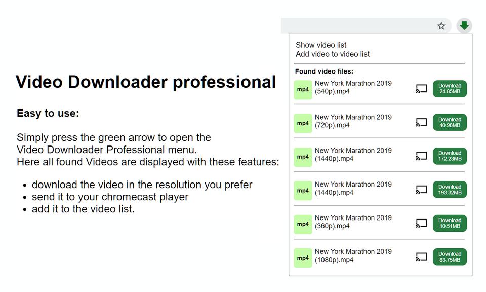 Video Downloader professional - 专业视频下载工具