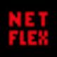 NetFlex 插件