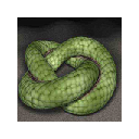 3D scene of a snake rolling on the ground 插件