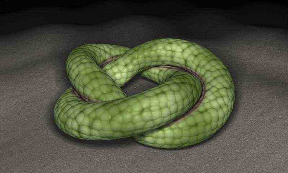 3D scene of a snake rolling on the ground