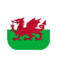 Welsh Rugby Links 插件