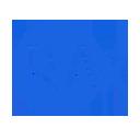 RAx Web Importer 插件