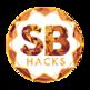 SB Hacks Contact Finder 插件
