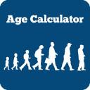 Age Calculator 插件