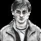 Tom Potter 插件