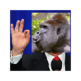 Trumps Out For Harambe 插件