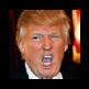 Dildify Trump 插件