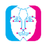 Doppelganger by VisageCloud 插件