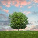 Easy POE: Helper for POE Passive Tree