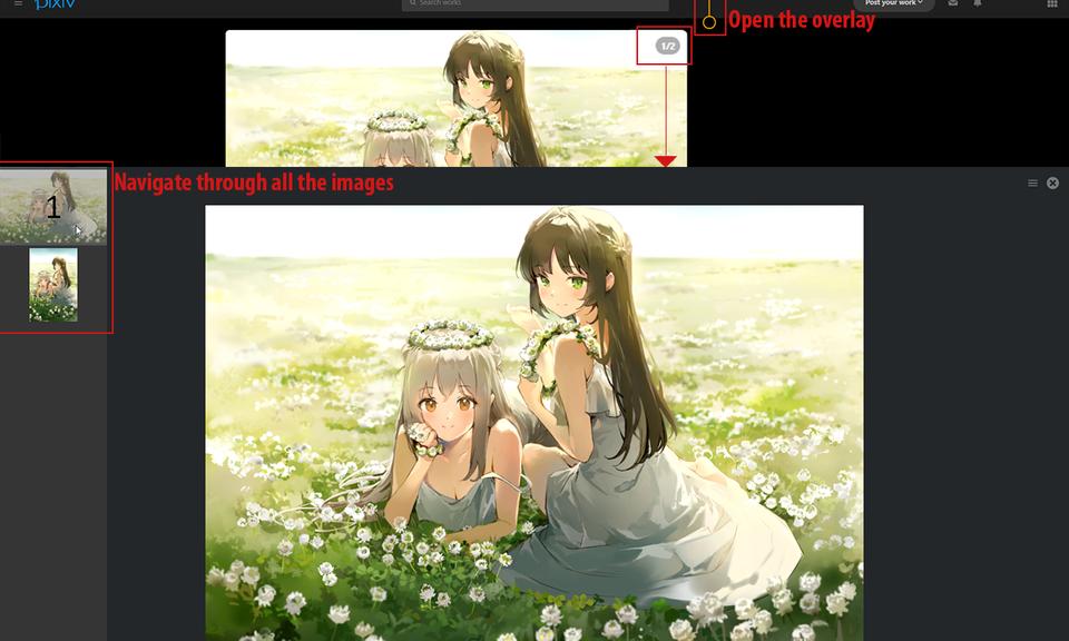 Pixiv Image Overlay