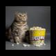 Fat Cat Eating Popcorn 插件