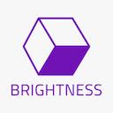 Brightness Brush 插件