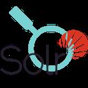 Solr Query Debugger - LOGO