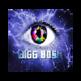 Bigg Boss Filter 插件