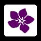 Lymphoma Association 插件