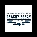 Peachyessay - Get Professional Essay 插件
