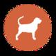 Bloodhound Attributor 插件