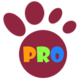 ProKopaser 插件