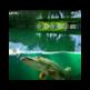 Willow Pond Fishing 插件