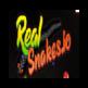 Real snakes io Play 插件