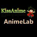 AnimeLab - Watch English Dubbed Animehub Free 插件