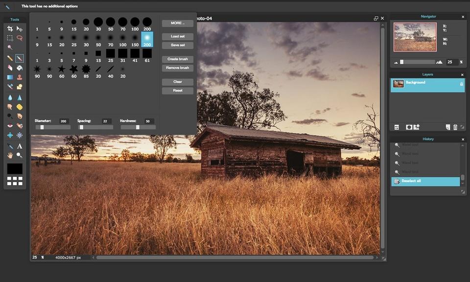Pixlr Editor-在线照片编辑器